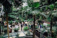Hire Space - Venue hire The Conservatory at Barbican Centre