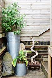 Hire Space - Venue hire The Terrace Bar & Garden at The Chapel Bar
