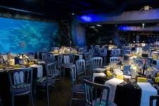 Hire Space - Venue hire  Atlantic Cove at SEA LIFE London Aquarium