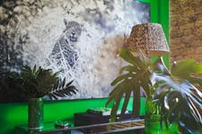 Hire Space - Venue hire Tropical Library  at Lumiere London