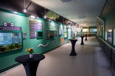 Hire Space - Venue hire Unique Animal Houses at ZSL London Zoo