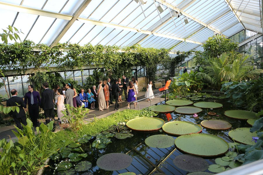Photo of Princess of Wales Conservatory at Kew Gardens
