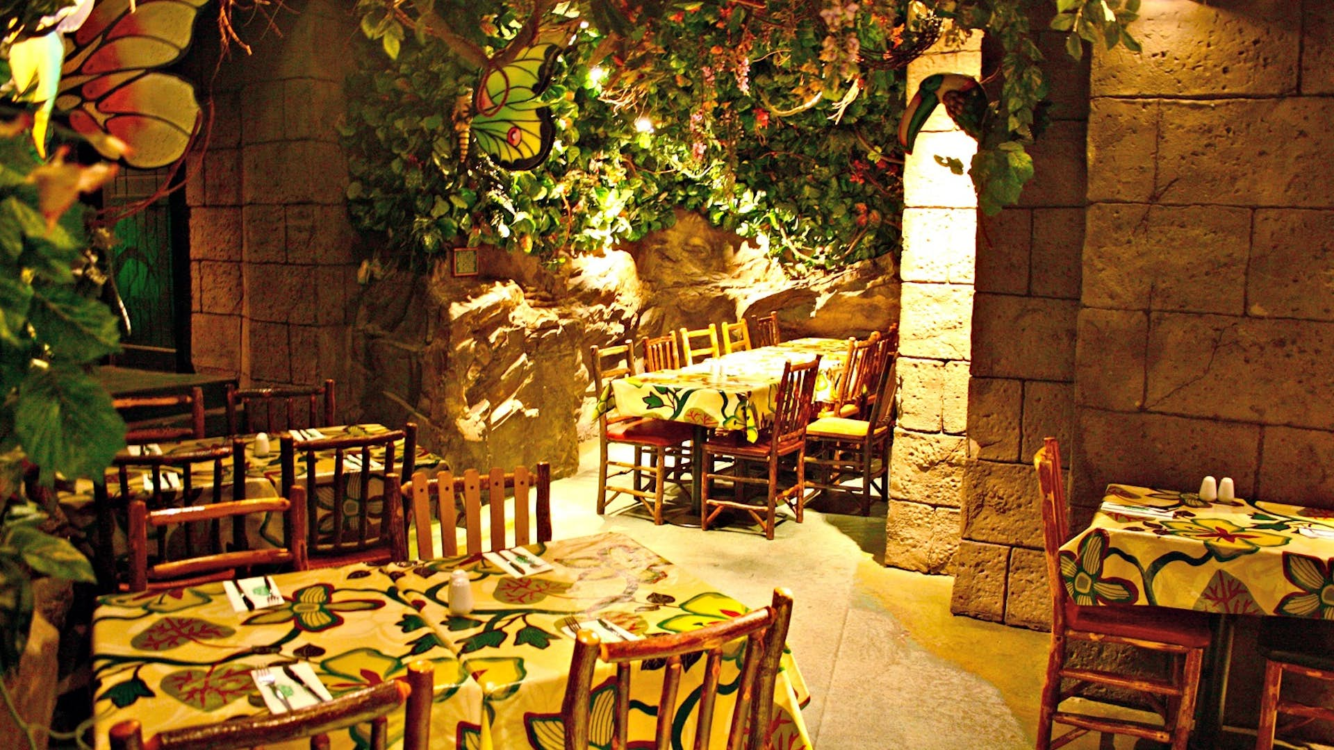 Image result for rain forest restaurant hd pics