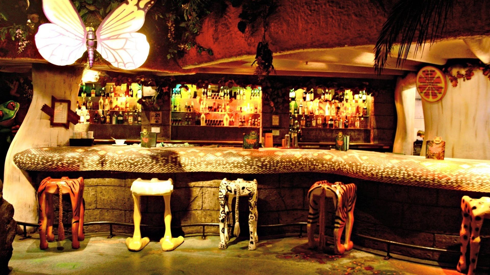 Butterfly Room Events Hire Rainforest Cafe